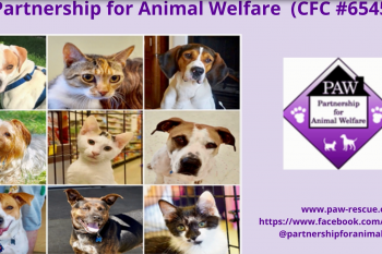 Partnership for Animal Welfare (CFC #65456)